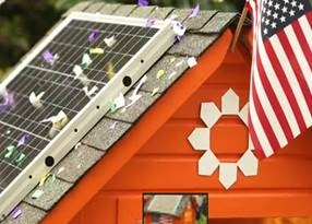 Video of the Day: Bo Obama Wants a Solar-Powered Inauguration