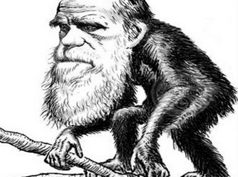Why Charles Darwin Would Love Distributed Energy