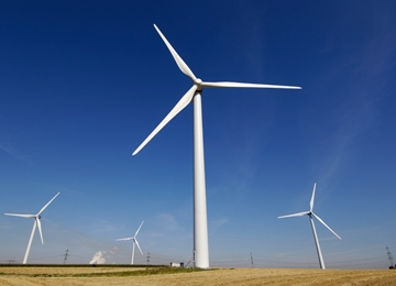 Wind Wednesday: Europe Wants a Super Grid, Dead Bats and Siemens Pursues Turbines