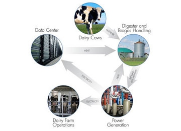 HP Asks: Can Manure Run Data Centers?