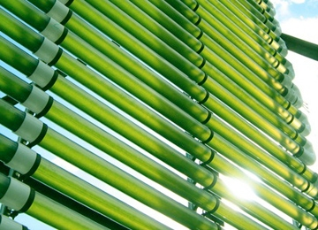 Algae Company #60 Takes Design Cues From Servers, Telecom
