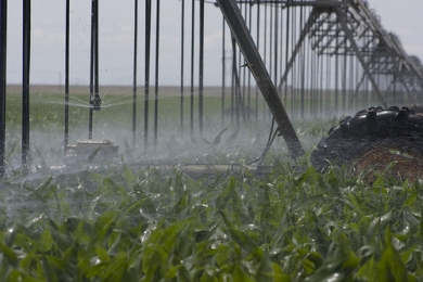 Technology: Key Water Saving Solution for California Farms